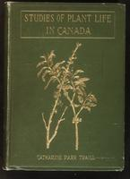 Studies of plant life in Canada: wild flowers, flowering shrubs, and grasses (new ed., 1906) / by Mrs. C.P. Traill