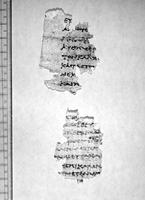 OUG UNC 69 13.05.1902 p492