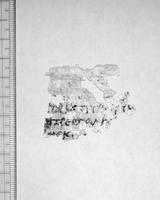 OUG UNC 69 13.05.1902 p493